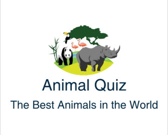 cute Archives - Animal Quiz - The Best Animals in the World